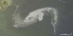 oil spill_304